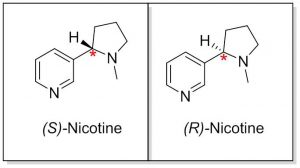 Nicotine levorotatory (S) and detrorotatory (R) isomers
