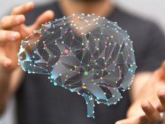 Nicotine effect on the brain