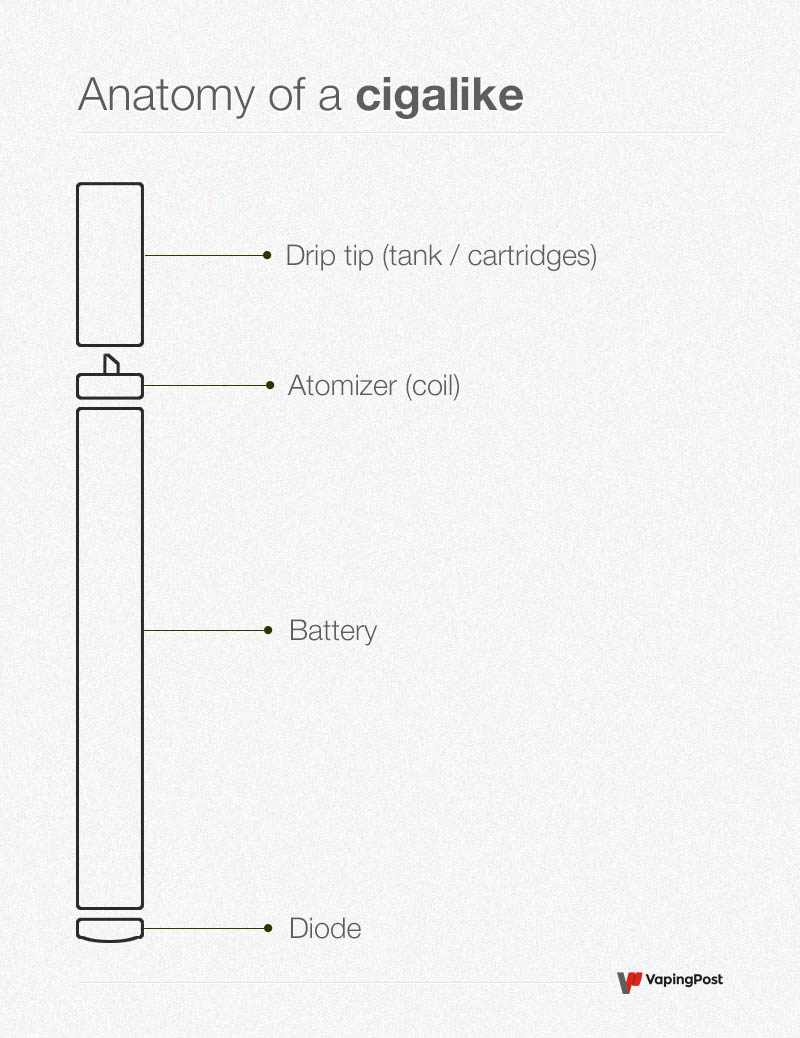 Anatomy of a cigalike