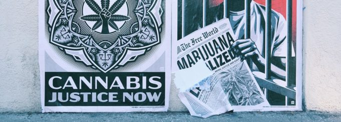 """""""cannabis justice now"""""""