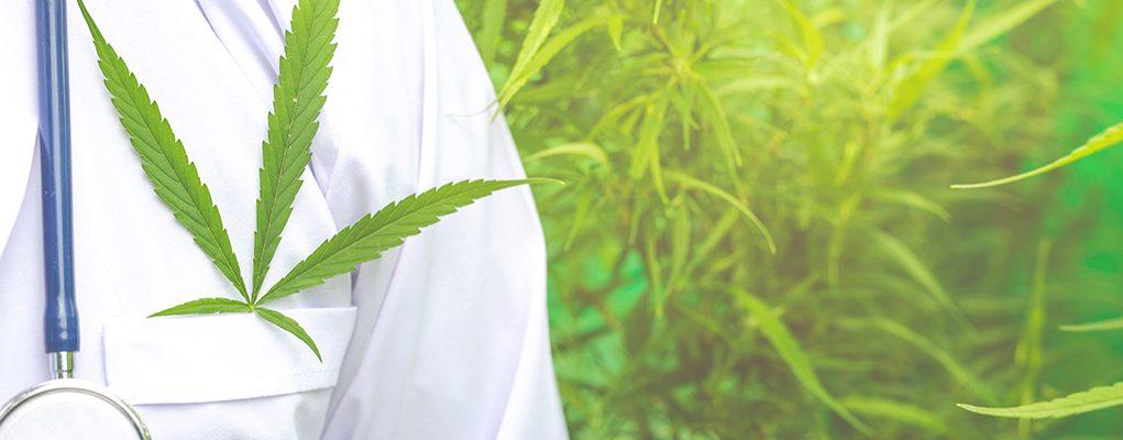 Medical marijuana, alternative herbal medicine concept