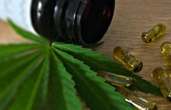 cannabis leaf and medecines