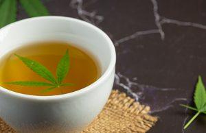 cup of hemp tea with hemp leaf